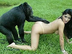 First sex with a monkey outside